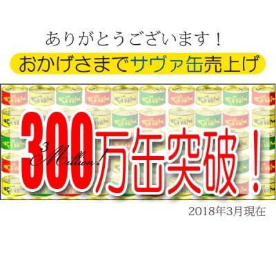サバ2 400.jpg