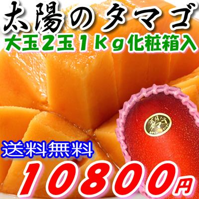 マンゴー2 400.jpg