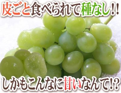 s_マスカット2 400.jpg