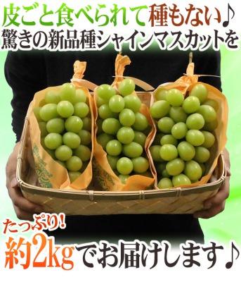 s_マスカット7 400.jpg